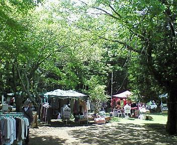 森の露天市