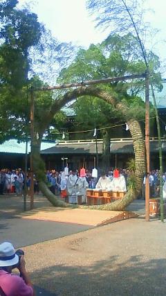 静岡・浅間神社・輪くぐりさん